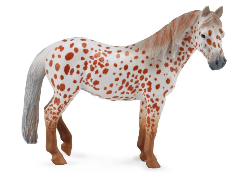 British spotted pony sto