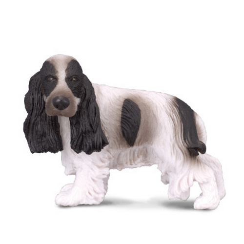 Cocker spaniel (tillf slut)