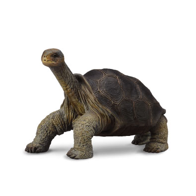 Jättesköldpadda Lonesome George