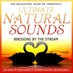 CD - Birdsong by the stream