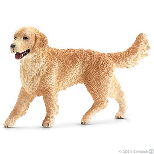 Golden retriever tik