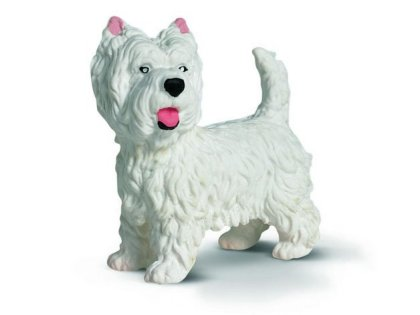 West Highland-terrier